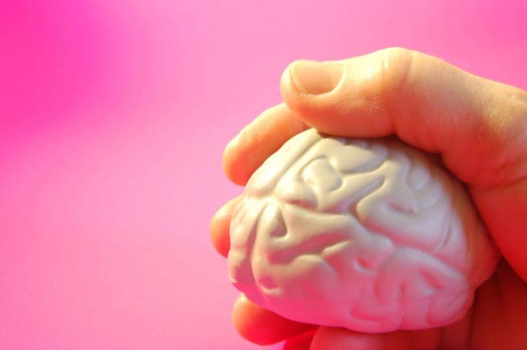 a healthy brain mri
